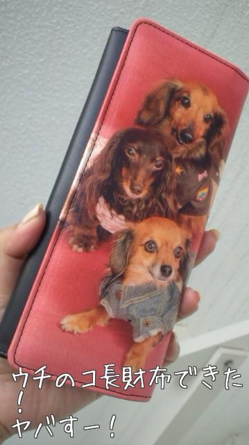 看板犬長財布