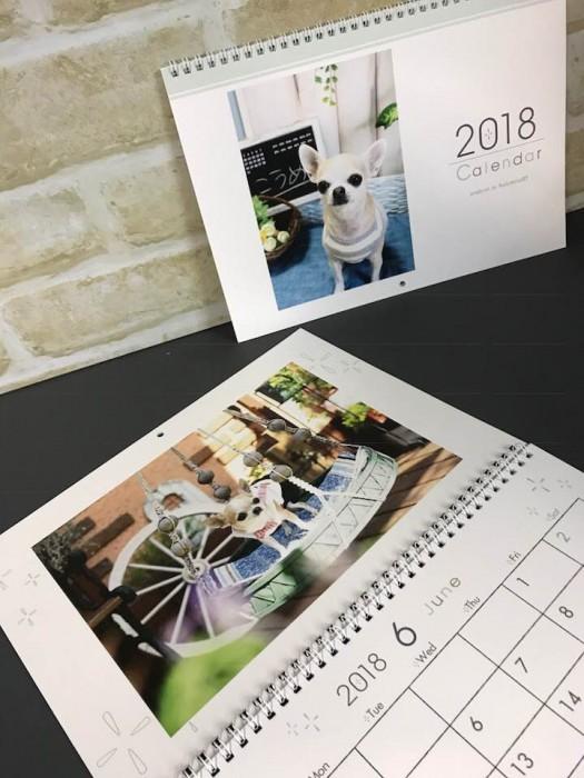 1ヶ月めくりカレンダー チワワ