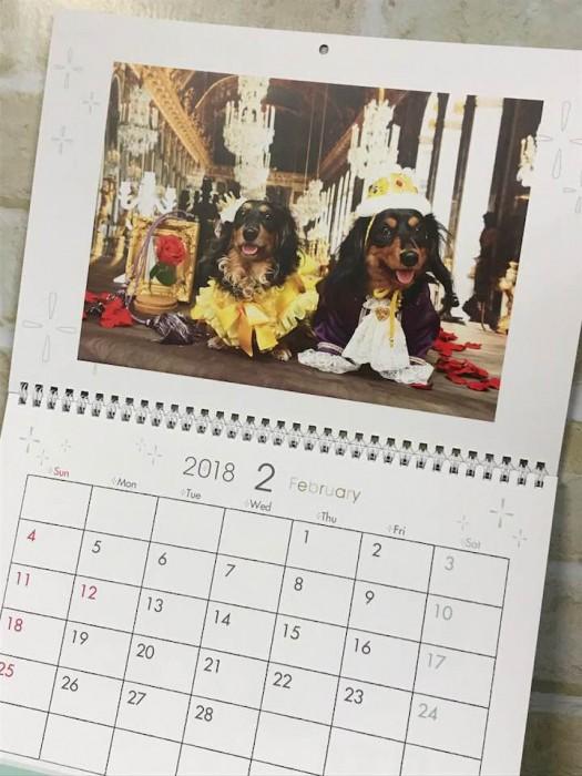 ダックス 美女と野獣カレンダー